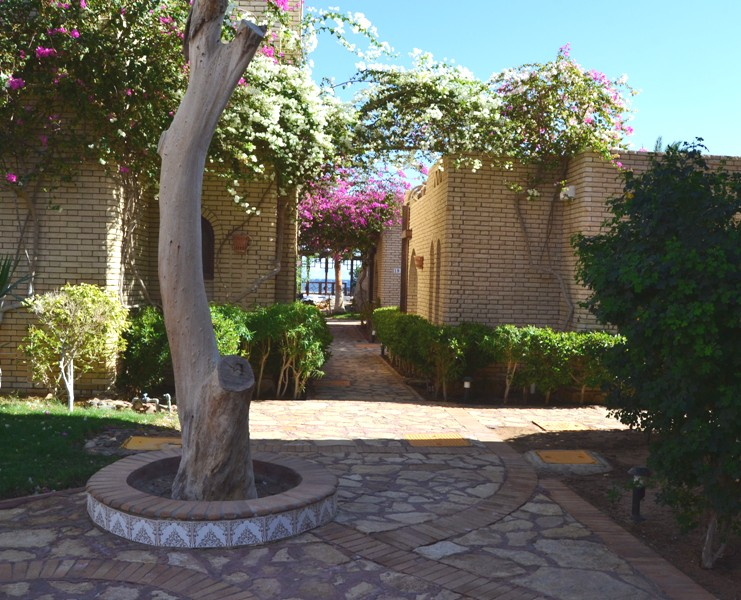 Standard Rooms, Nesima beachfront hotel, Dahab