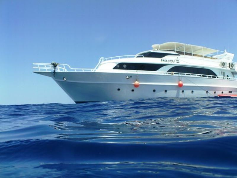 Red Sea liveaboard, diving holidays, Freedom III